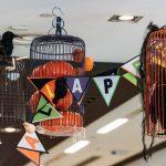 gallery-halloween-cagesandpumpkins
