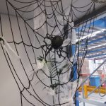 gallery-halloween-spiderweb