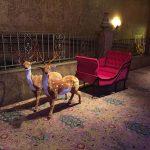 gallery-props-reindeersandsleigh