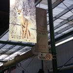 gallery-signs-prahranmarket