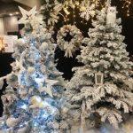 gallery-winterwonderland-treetrio