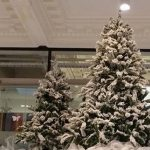 gallery-winterwonderland-whitedeerandtrees
