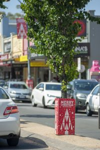 Street tree with Christmas wrap