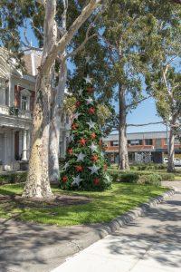 5m Christmas tree