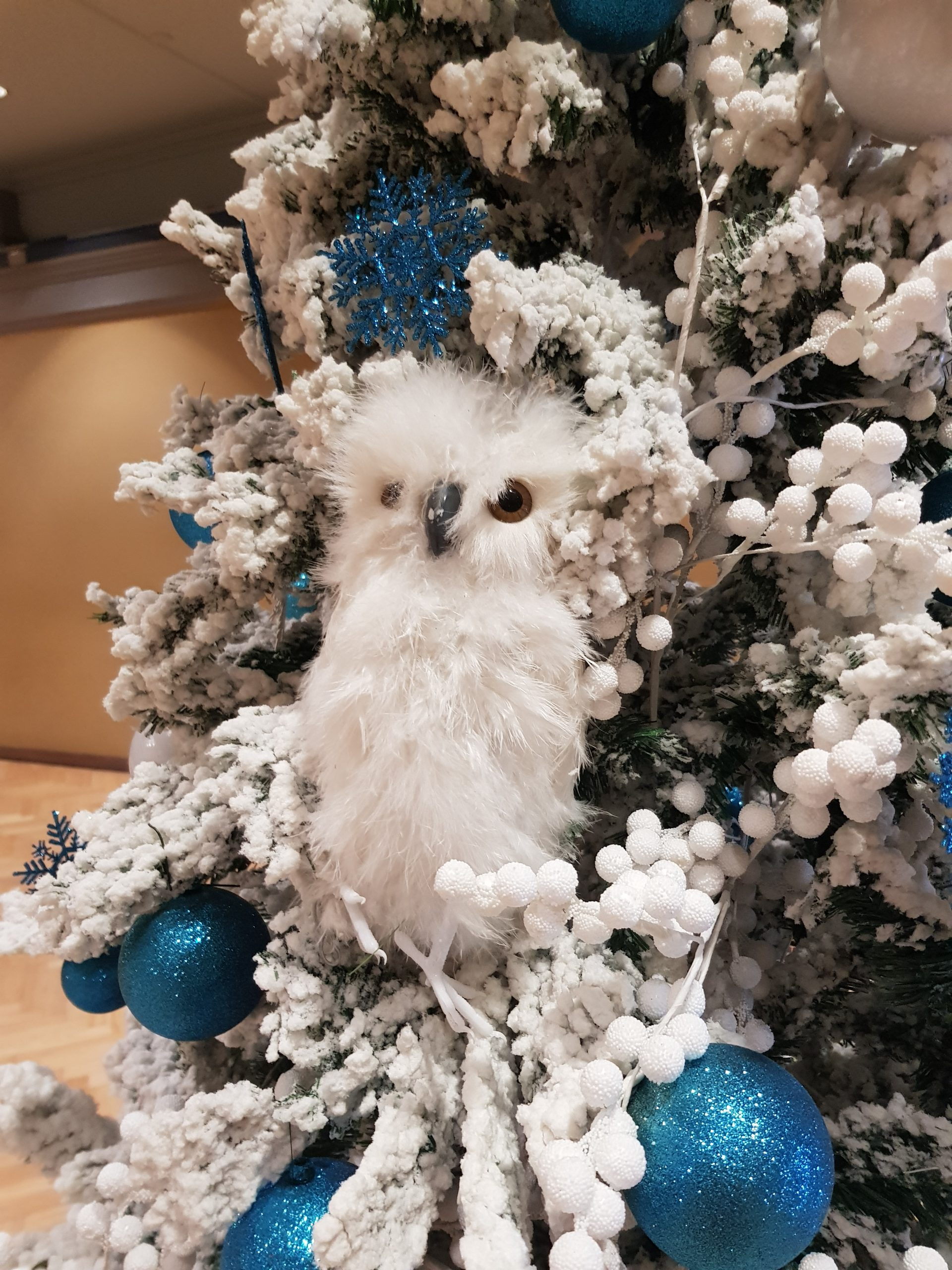 Snowy owl in our Christmas trees