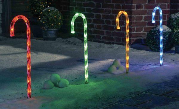 MultiColour Candy Canes garden