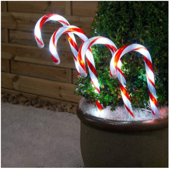 Solar Candy Cane in Red White