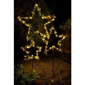 Standing Star lights