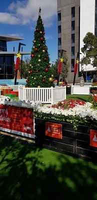 Christmas pop up garden with large Chrsitmas tree and plants