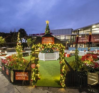 Pop up Christmas garden with Christmas tree