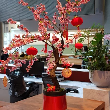 Lunar New Year Blossom tree and decorations